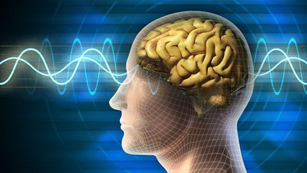 escola-brasileira-de-games-raciocínio brains trainer